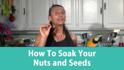 How To Soak Your Nuts and Seeds