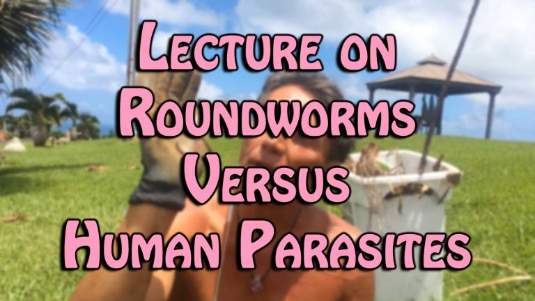 Lecture on Roundworms Versus Human Parasites