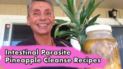 Intestinal Parasite Pineapple Cleanse Recipes
