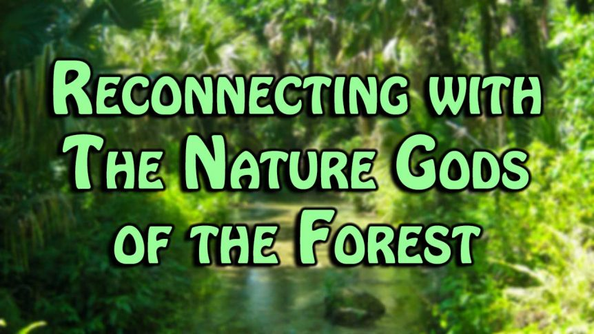 Reconnecting with The Nature Gods of the Forest