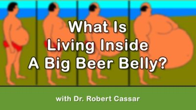 What Is Living Inside A Big Beer Belly?