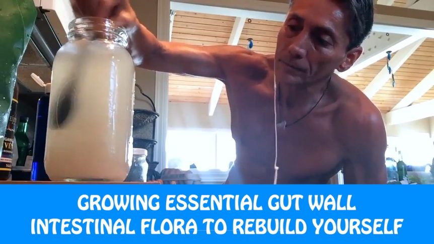 Growing Essential Gut Wall Intestinal Flora To Rebuild Yourself