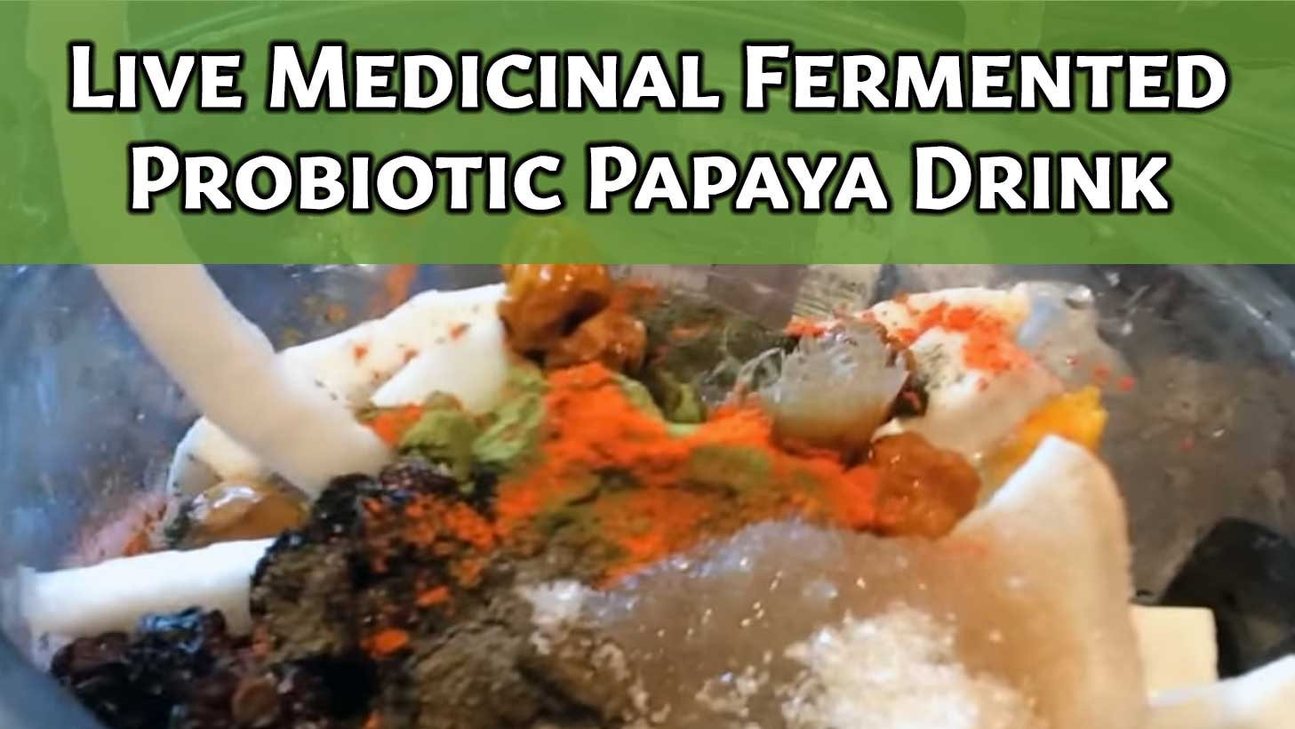Live Medicinal Fermented Probiotic Papaya Drink