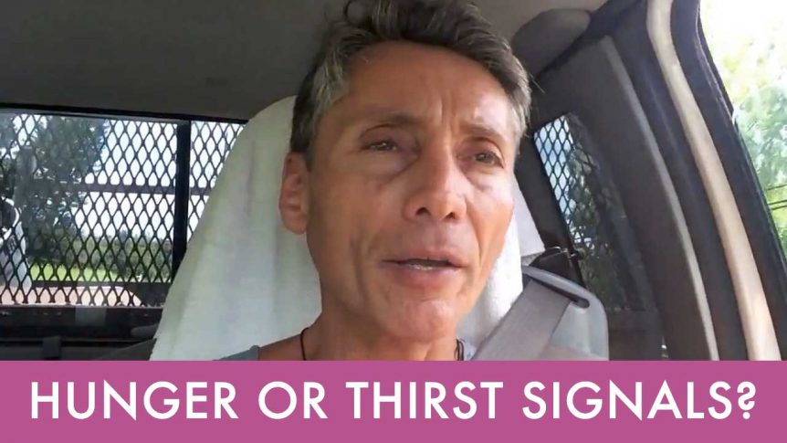 Hunger Or Thirst Signals?