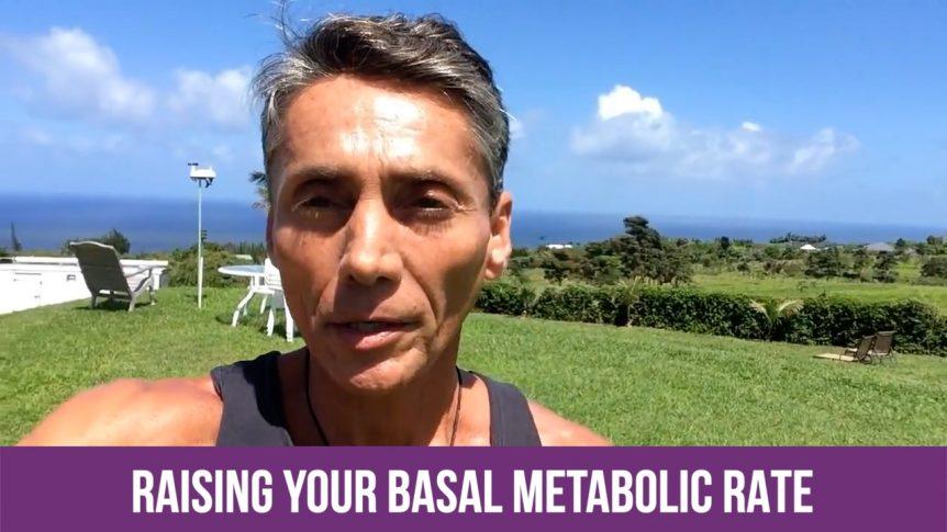 Raising Your Basal Metabolic Rate