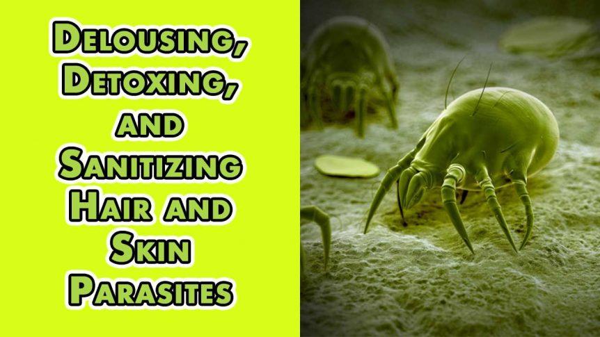 Delousing, Detoxing, and Sanitizing Hair and Skin Parasites