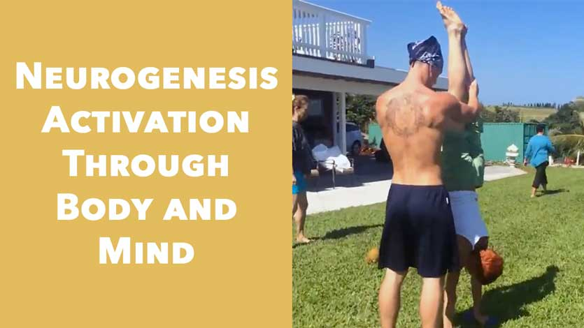 Neurogenesis Activation Through Body and Mind