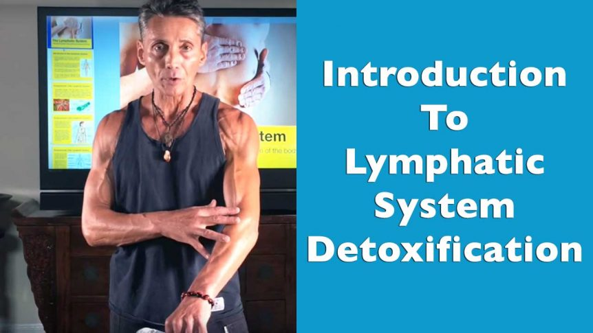 Introduction To Lymphatic System Detoxification