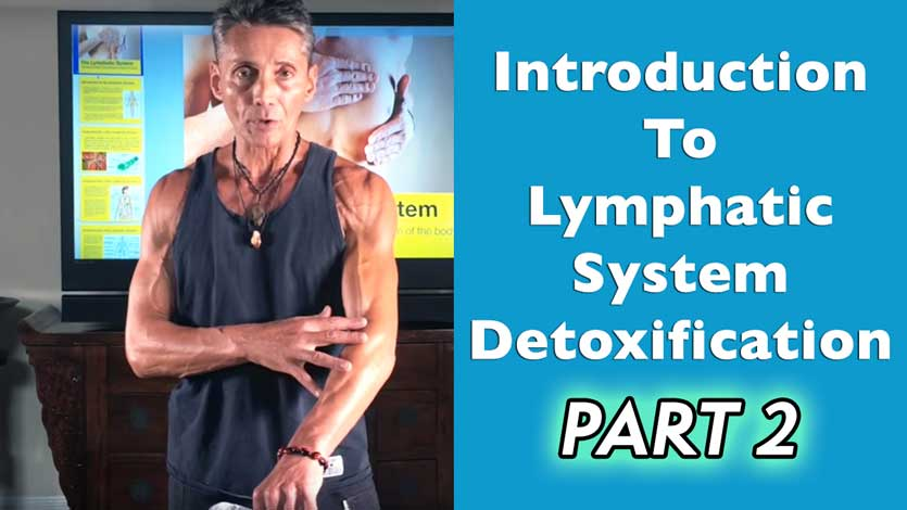 Introduction To Lymphatic System Detoxification Part 2