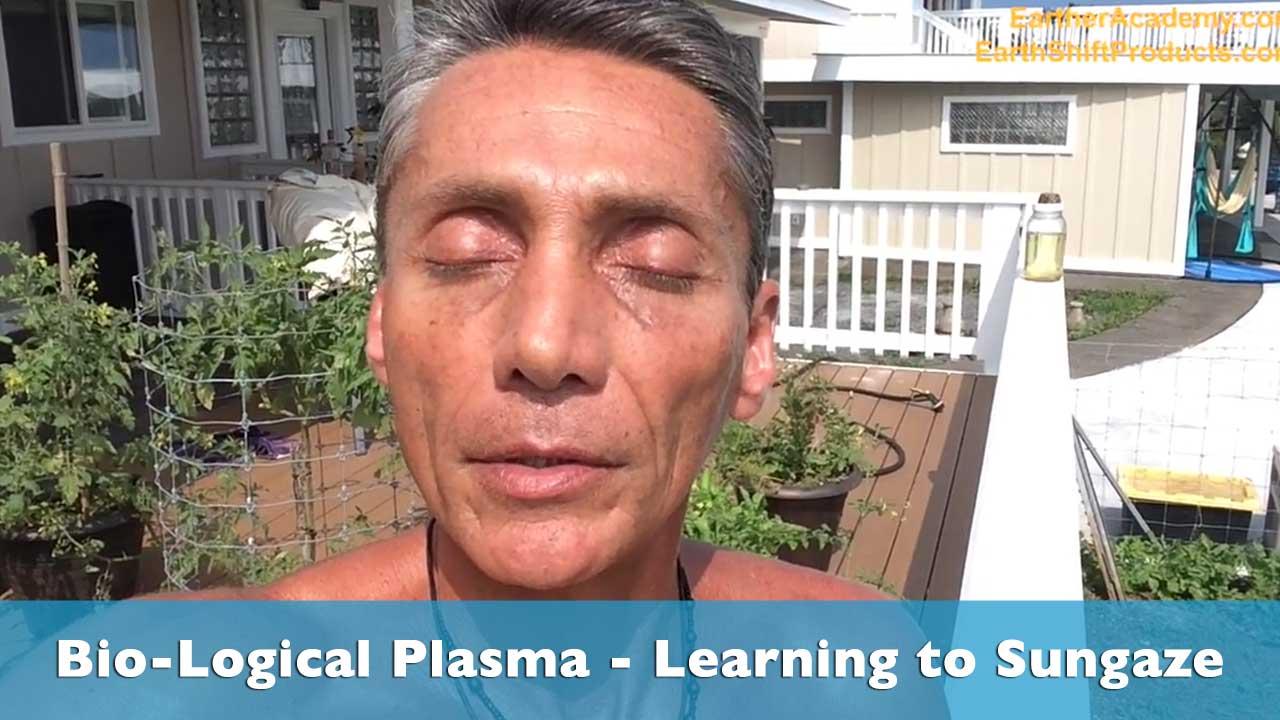 Biological Plasma Learning To Sungaze