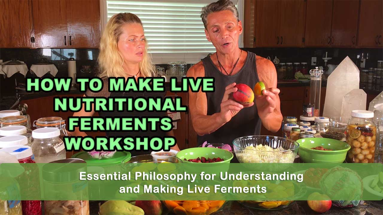 How To Make Live Nutritional Ferments Workshop with Dr. Robert Cassar