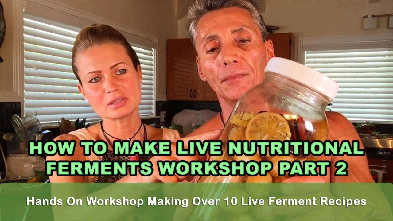 How To Make Live Nutritional Ferments Workshop Part 2