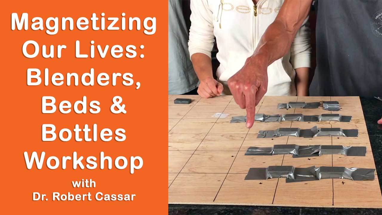 Magnetizing Our Lives: Blenders, Beds & Bottles Lecture and Workshop Part 2