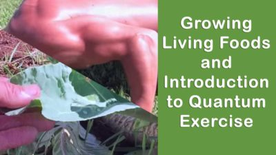 Growing Living Foods and Introduction to Quantum Exercise