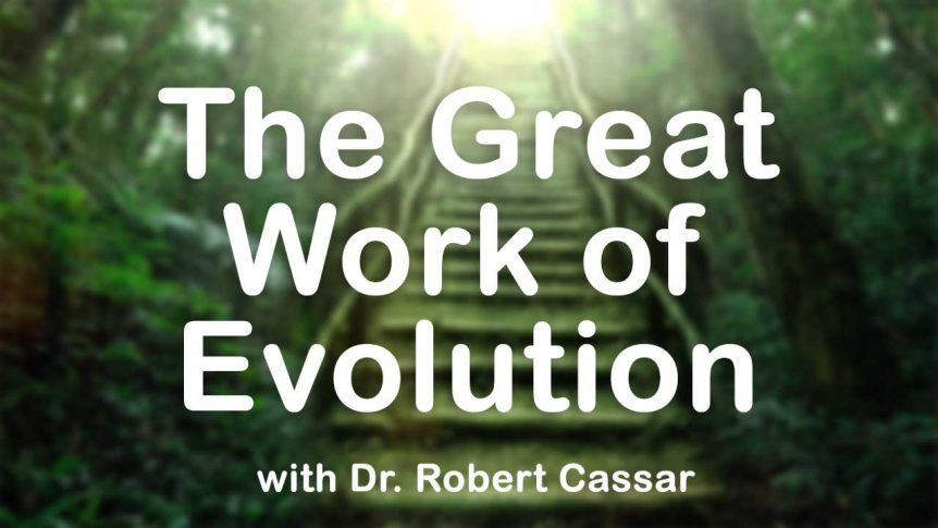 The Great Work of Evolution