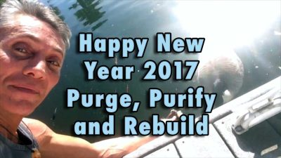 Happy New Year 2017 - Purge, Purify and Rebuild