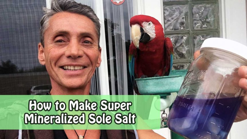 How to Make Super Mineralized Sole Salt
