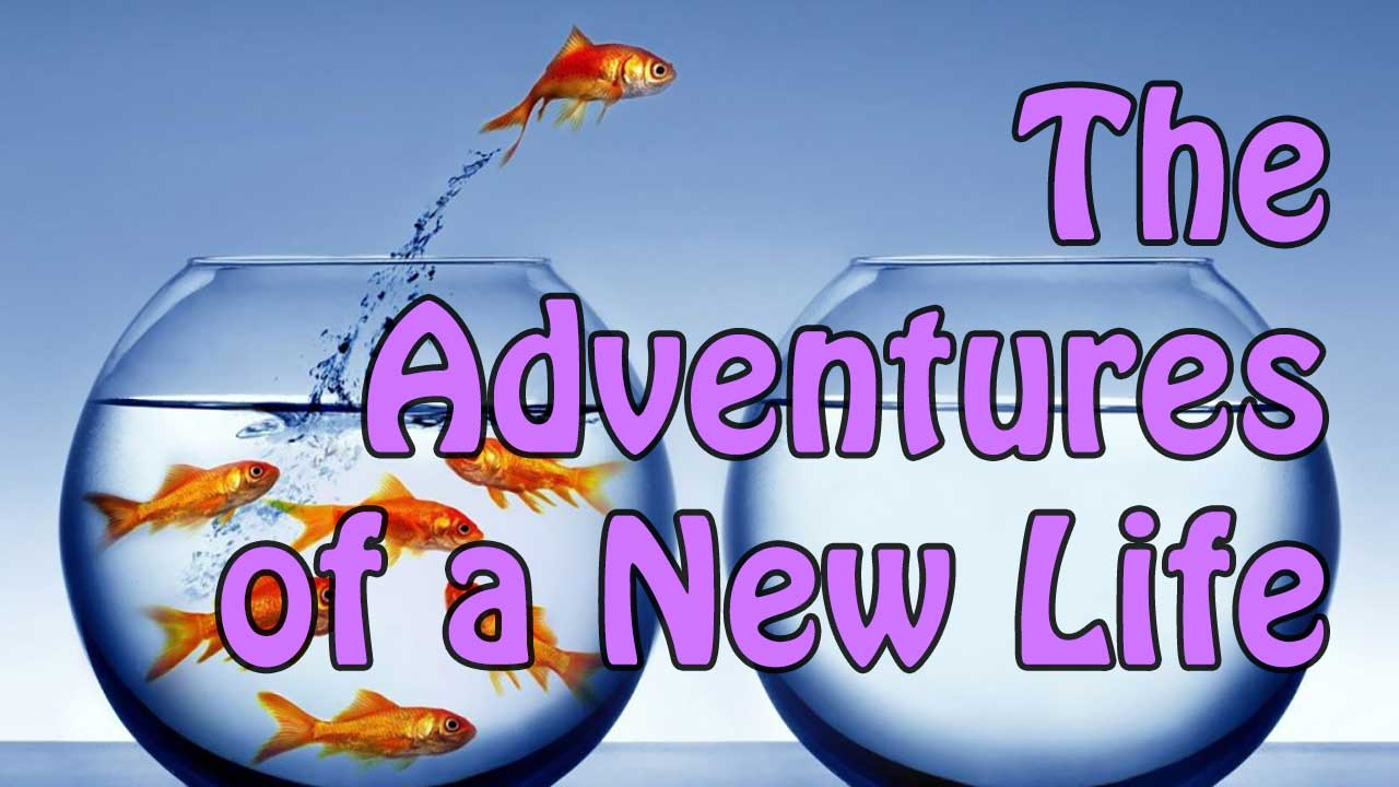 The Adventures of a New Life