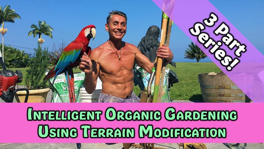 Intelligent Organic Gardening Using Terrain Modification