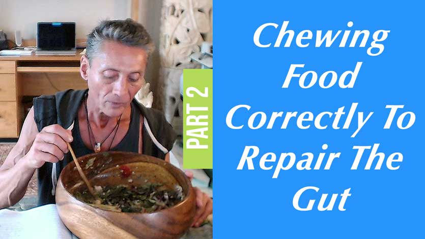 Chewing Food Correctly To Repair The Gut Part 2