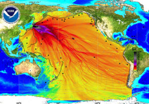 Radiation In Fish In Radioactive Water In Japan