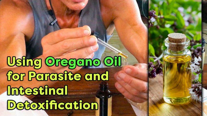 Using Oregano Oil For Parasite And Intestinal Detoxification