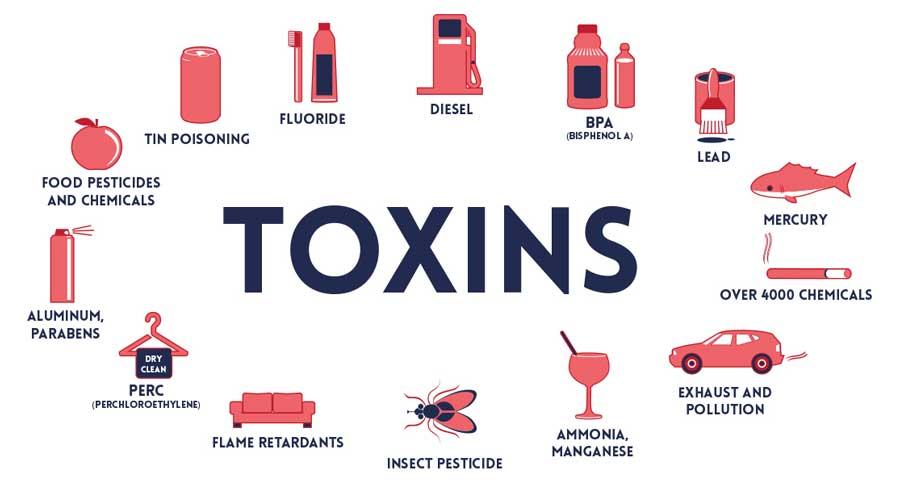 Various Types Of Toxins
