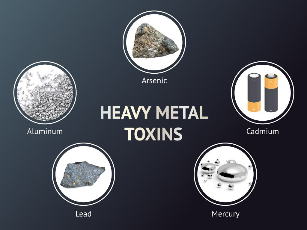 Heavy Metal Toxins