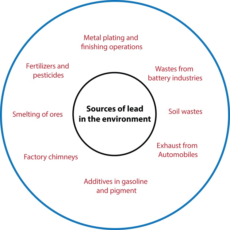 Sources of Lead Environment