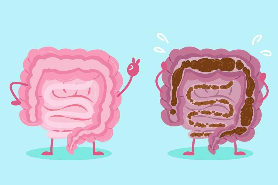 Cartoon Intestine with Health Concept