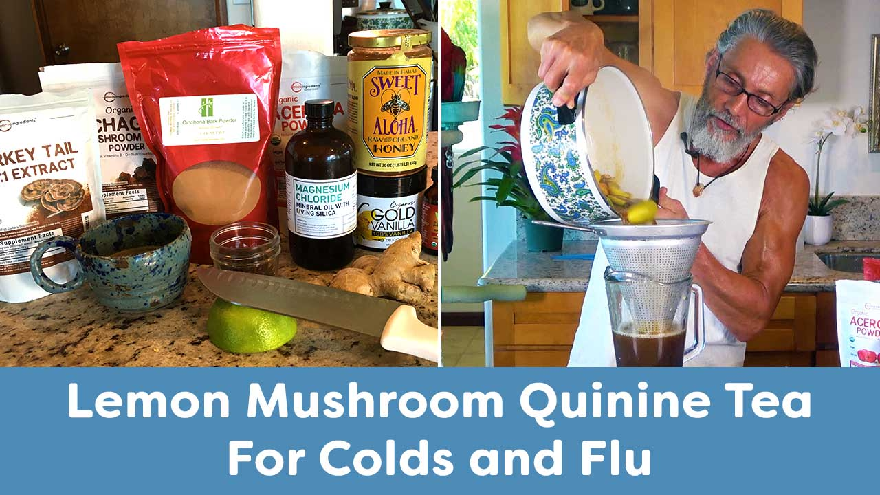 Lemon Mushroom Quinine Tea For Colds and Flu