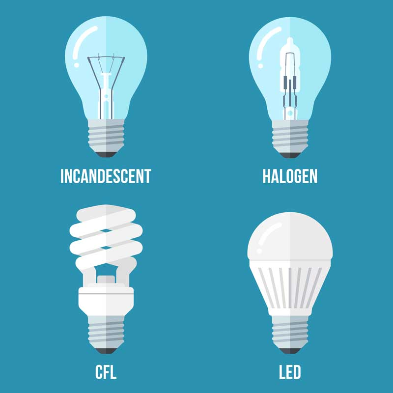 Vector illustration of main electric lighting types: incandescent light bulb, halogen lamp, cfl and led lamp